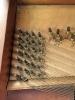 Broadwood-square-1799-SD-bass-tuning-pins-web