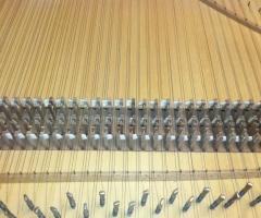 Flemish Double Manual Harpsichord by Anne Acker, jacks