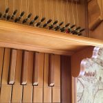 Detail image of harpsichord keys and tuning pegs